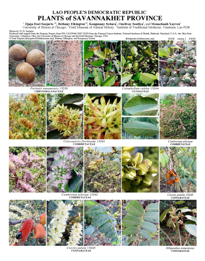 1014_lao_plants_of_savannakhet.pdf
