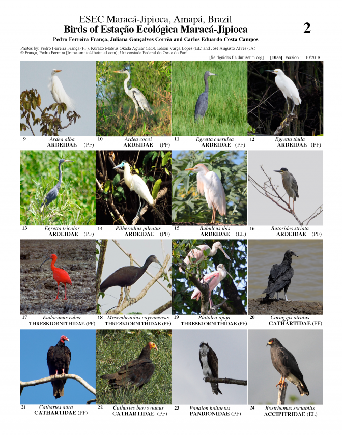 1055_brazil_birds_of_maraca-jipioca_station.pdf