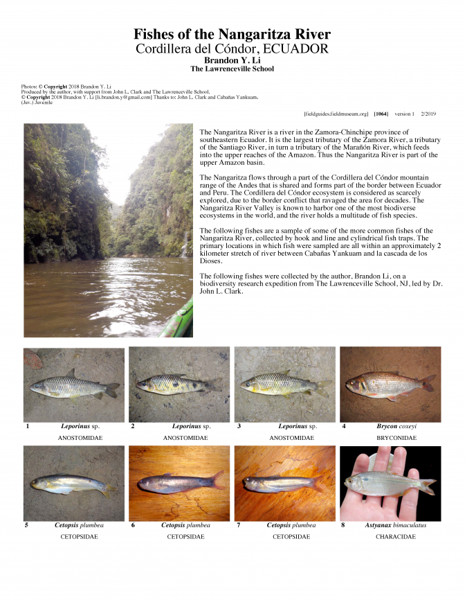 1064_ecuador_fishes_of_the_nangaritza_river.pdf