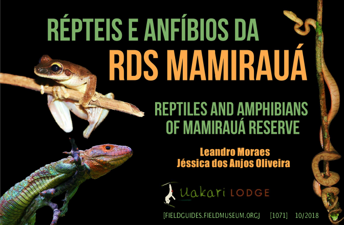 1071_brazil_reptiles_and_amphibians_of_mamiraua.pdf