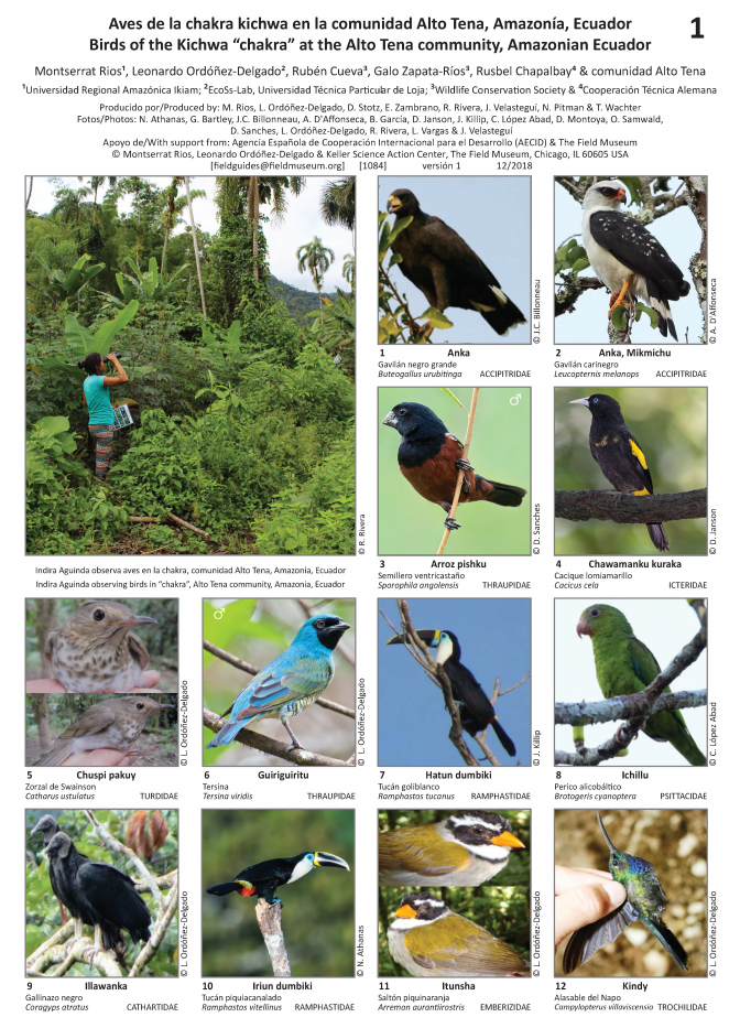 1084_ecuador_birds_of_the_kichwa_chakra_at_the_alto_tena_community.pdf