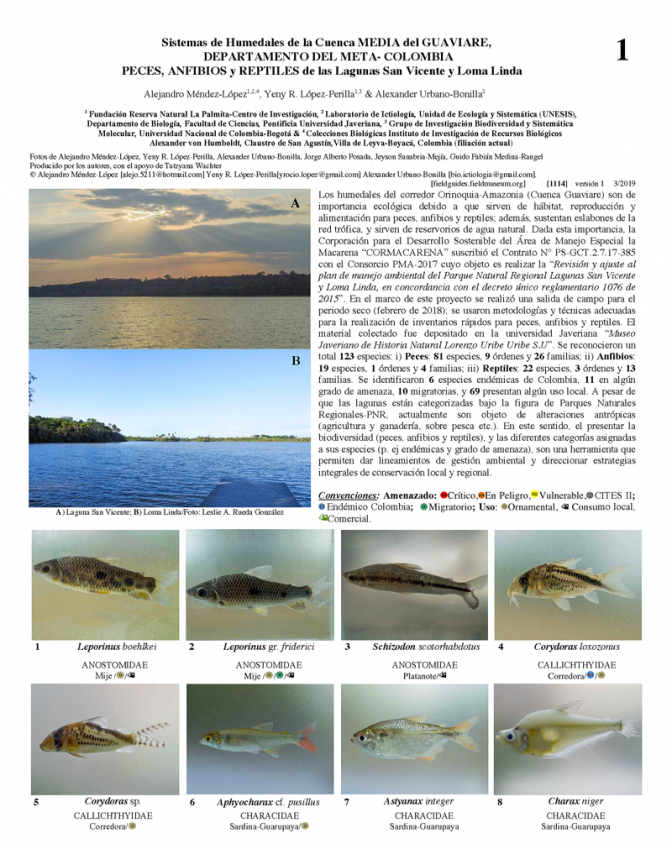 1114_colombia_fish_amphibians_and_reptiles_of_the_san_vicente_and_loma_linda_lagoons.pdf
