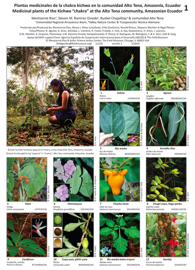 1115_ecuador_medicinal_plants_of_the_chakra_kichwa_at_the_alto_tena_community.pdf