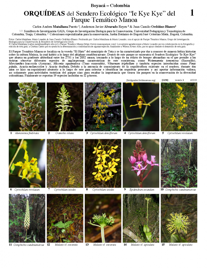 1158_colombia_orchidaceae_of_manoa_theme_park.pdf