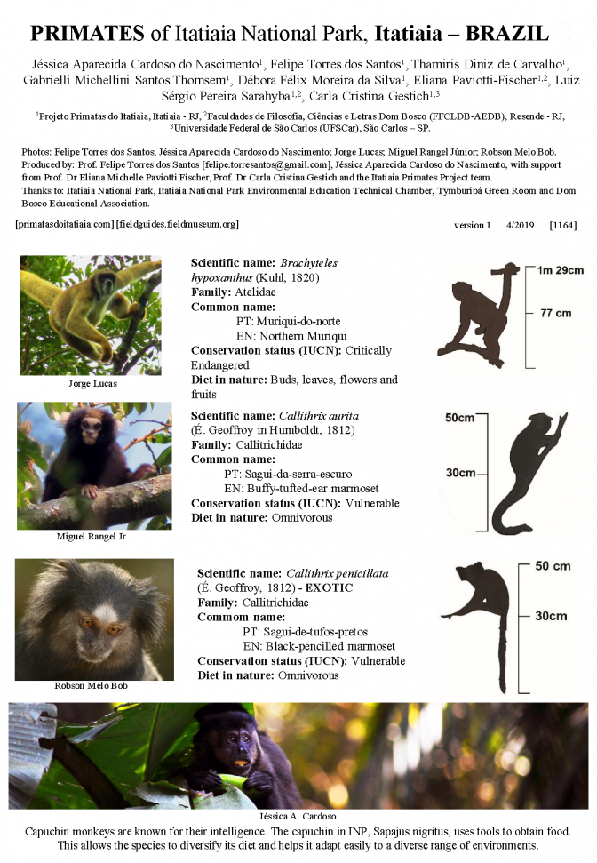 1164_brazil_primates_of_itatiaia_national_park.pdf