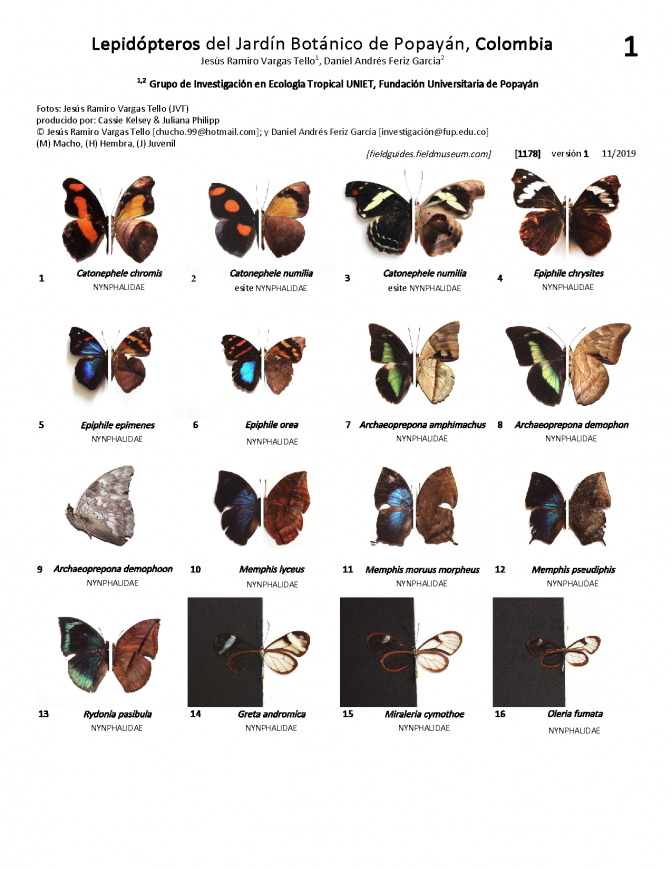 1178_colombia_lepidopteros_of_popayan_botanical_garden.pdf