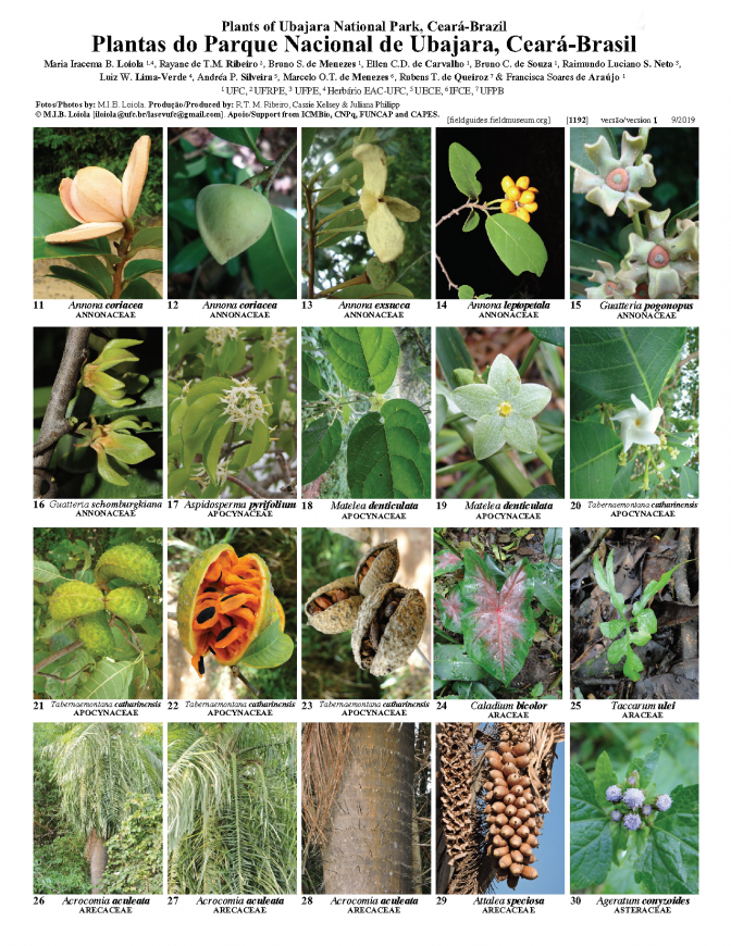 1192_brazil_plants_of_ubajara_national_park.pdf
