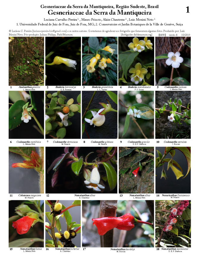 1193_gesneriaceae_of_the_serra_da_mantiqueira.pdf