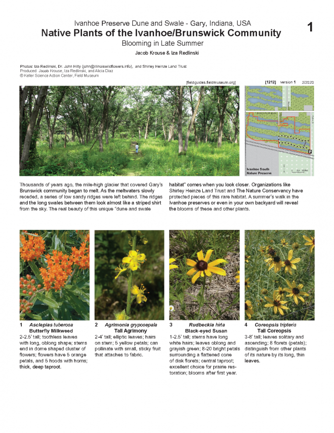 1212_usa_native_plants_of_ivanhoe.pdf