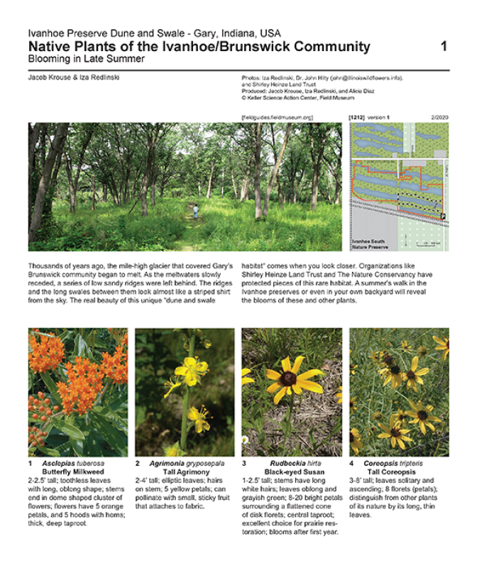 1212_usa_native_plants_of_ivanhoe_v.1.pdf