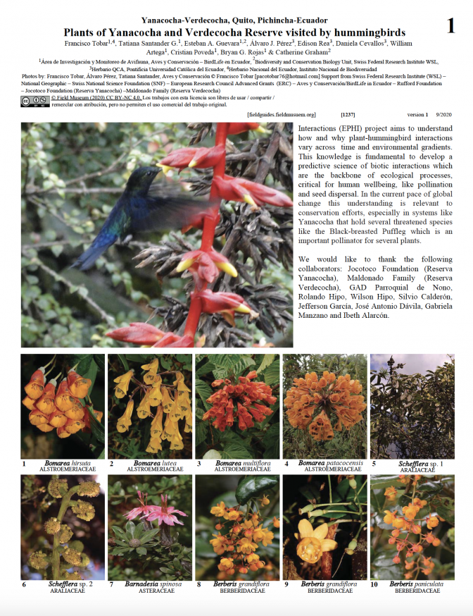 1237_ecuador_plants_of_yanacocha_and_verdecocha_reserve_visited_by_hummingbirds.pdf