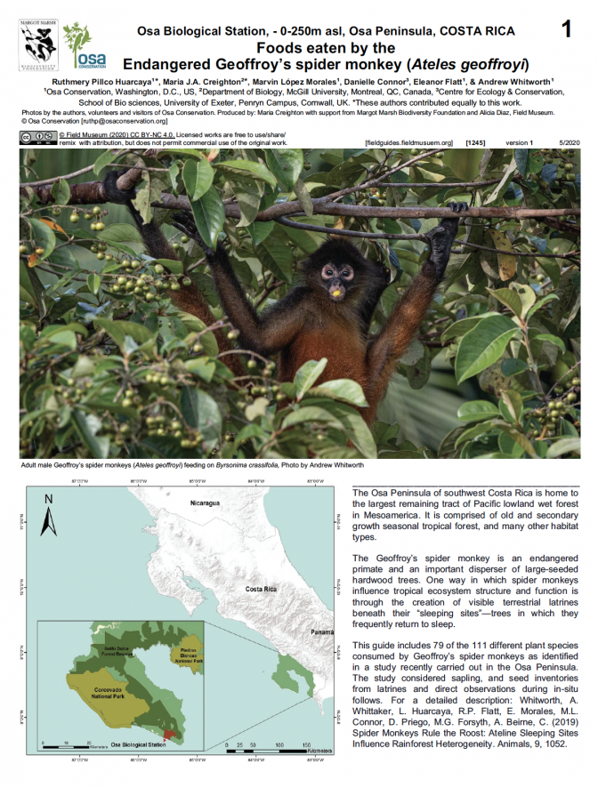 1245_costa_rica_spider_monkey_foods.pdf