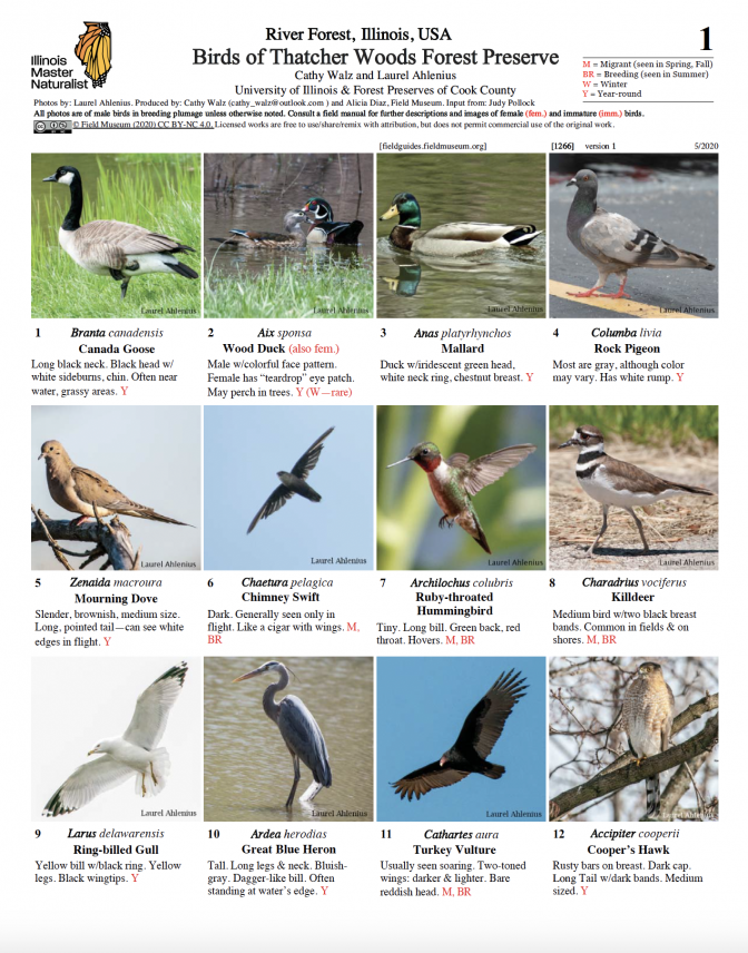 1266_illinois_birds_of_thatcher_woods.pdf
