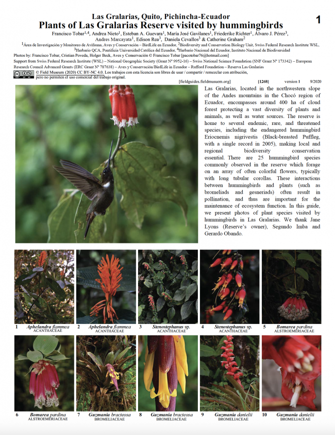 1268_ecuador_plants_of_las_gralarias_visited_by_hummingbirds.pdf
