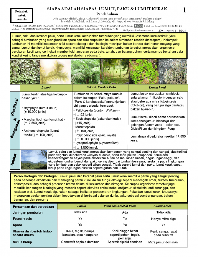 1270_bryophytes_for_beginners_indonesian_version.pdf
