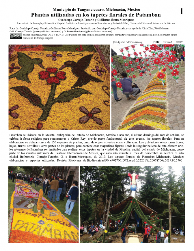 1316_mexico_plants_used_in_patamban_floral_rugs_.pdf
