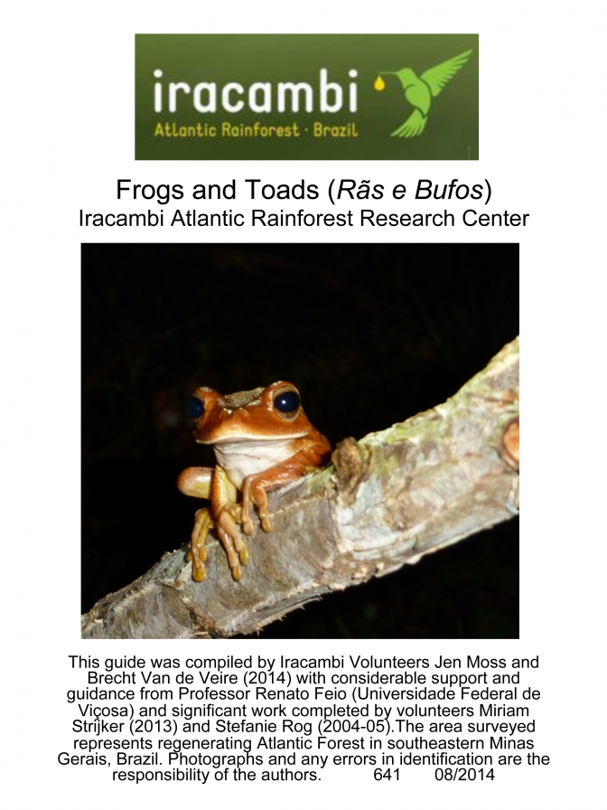 Minas Gerais -- Frogs & Toads of Iracambi