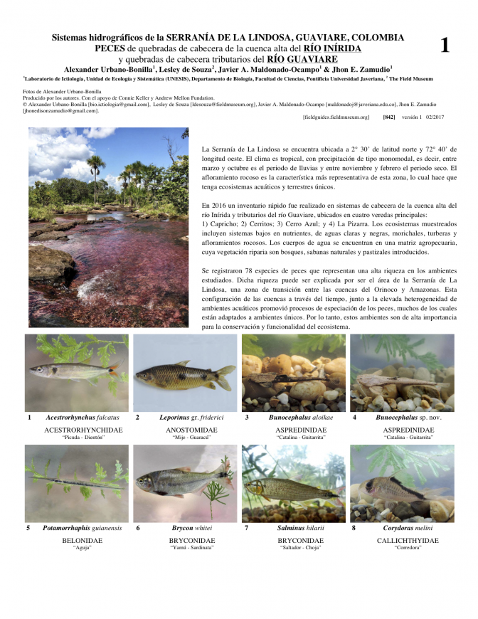 842_colombia_fishes_of_inirida_y_guaviare.pdf