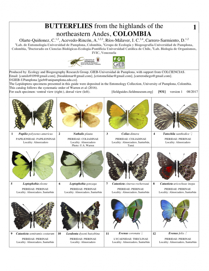 931_colombia_butterflies_of_ne_andes.pdf