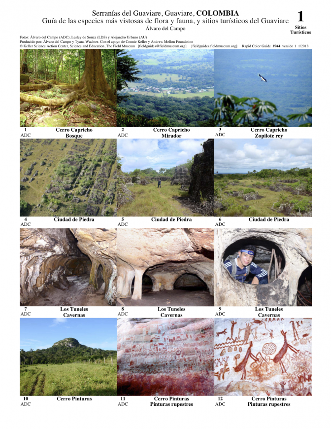 944_colombia_guaviare_flora_fauna_and_attractions.pdf