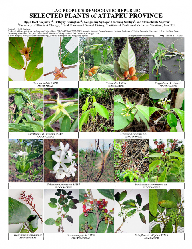 998_lao_plants_of_attapeu_province.pdf